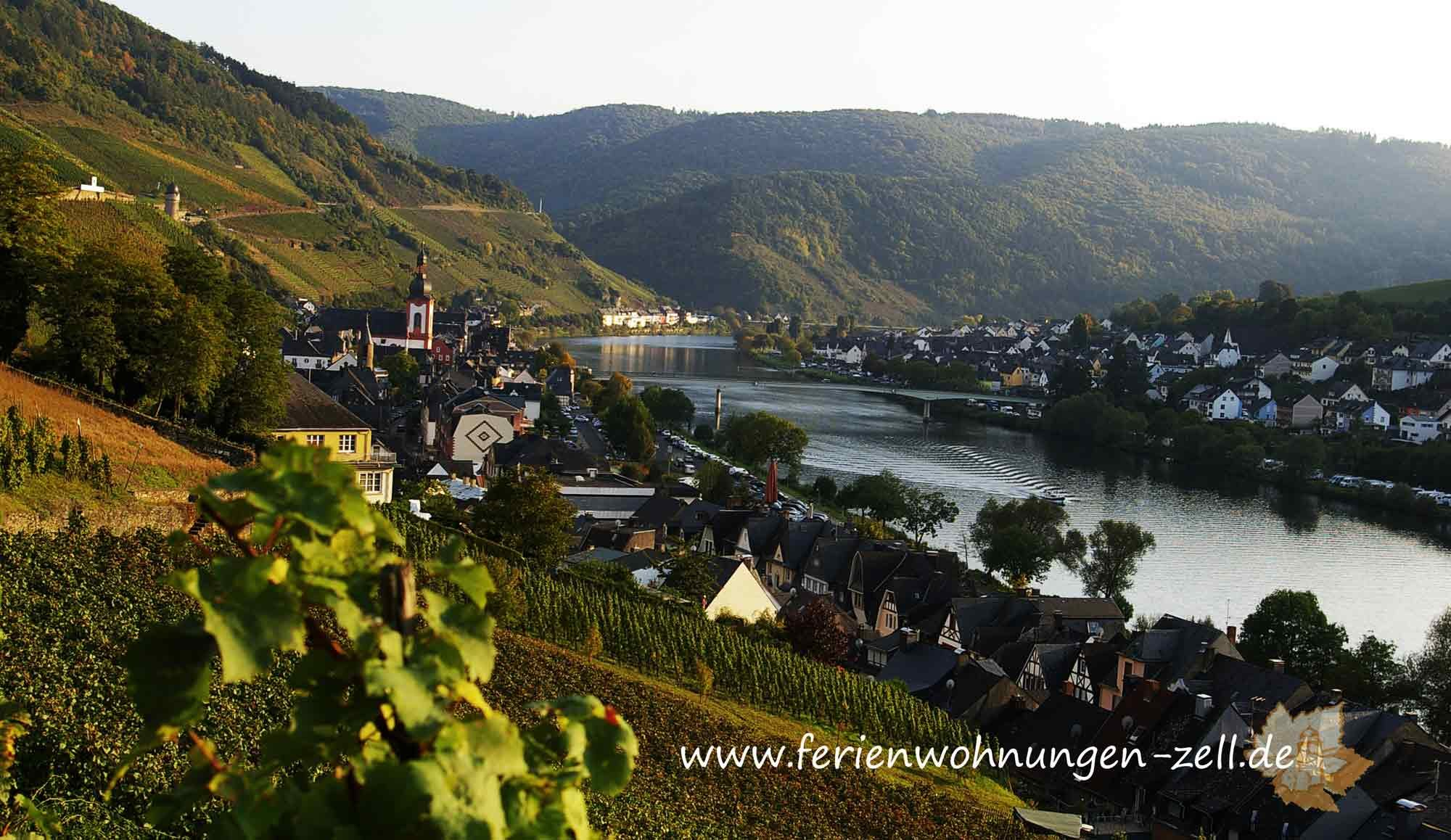 Wanderwege in Zell Mosel