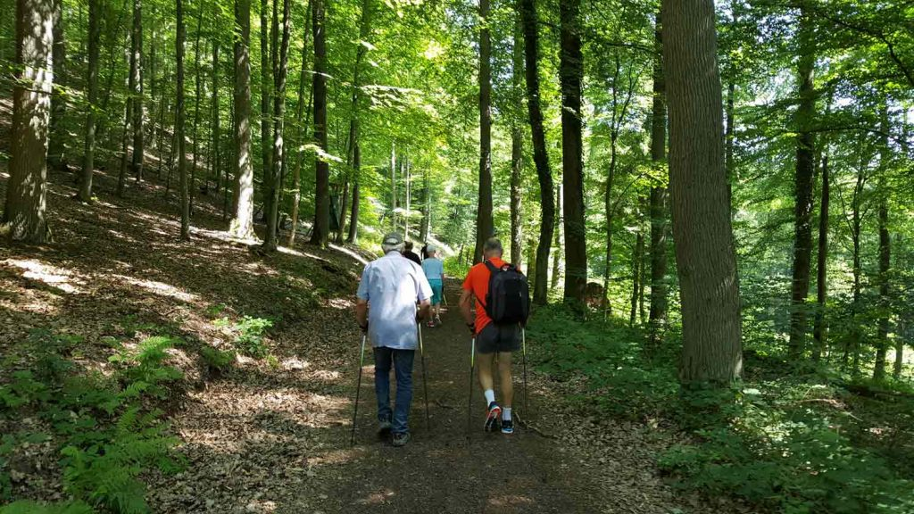 Nordic Walking in Zell